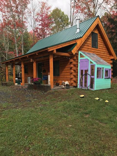Cozy Log Cabin on 30 acres