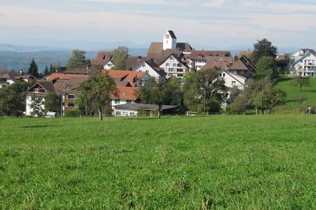 Grosszügige 4,5-Zi-Whg mit Sicht auf die Alpen - Oberwil-Lieli - Betjent leilighet