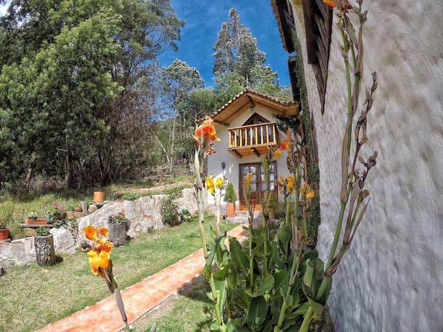 la cabaña se encuentra rodeada de naturaleza y privilegiada de la vista mas hermosa de Iza.