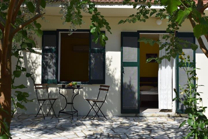Yard and Coffee table