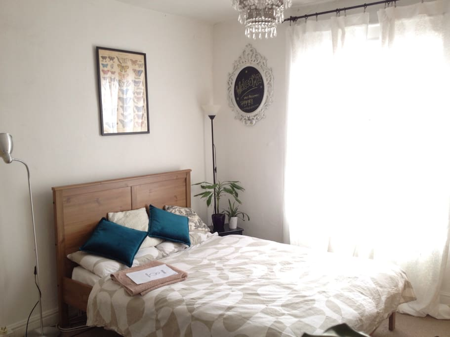 Rooms To Rent With Pets In Leeds
