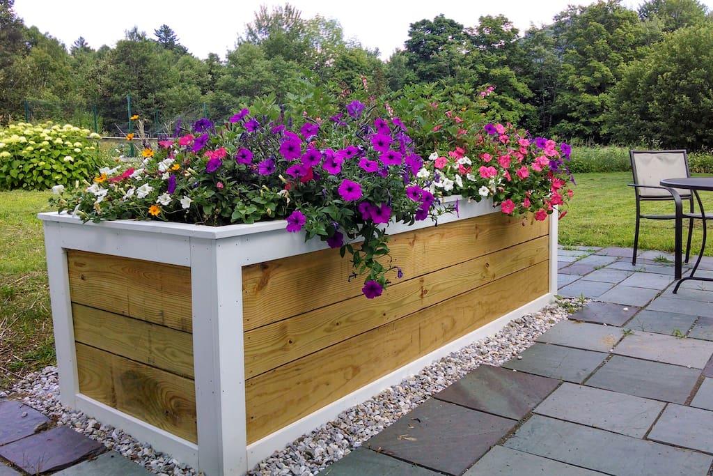 the Springtime flower box on the slate patio