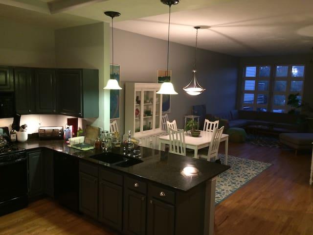 Luxury Tremont row house - Cleveland - House