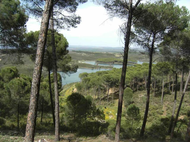 Casa junto al lago (5 min)