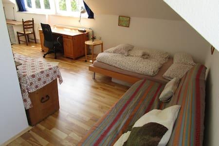 Helles Dachzimmer+Küche in Stadt-Kultur-Natur - Wiesbaden - Villa