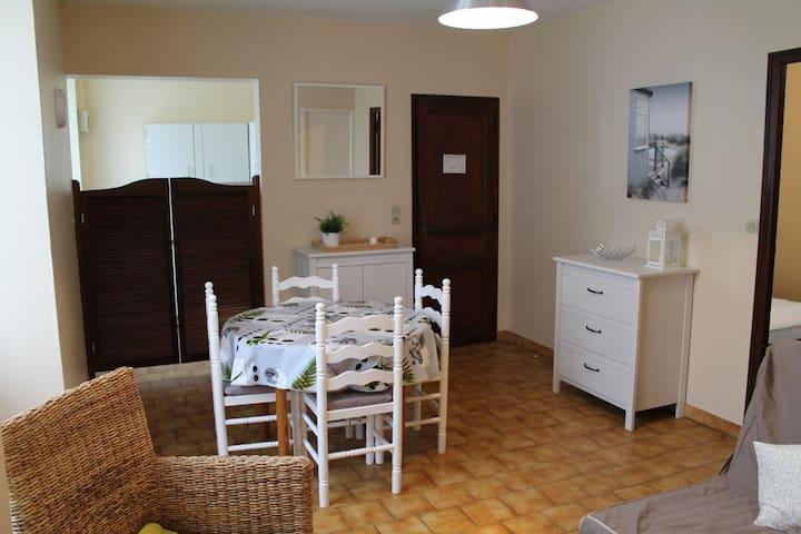 Appartement T2 de 36 m² avec WIFI en centre-ville - La Roche-Posay