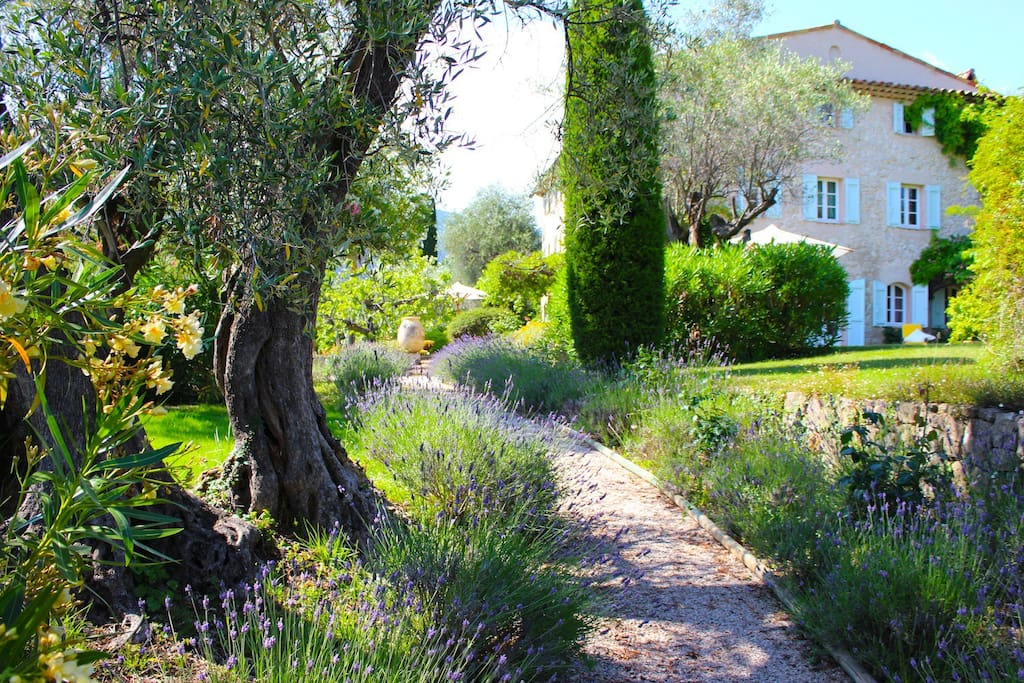 Lavender and Jasmine-lined Paths Welcome You