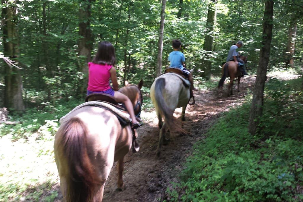 Nature Trails & Horseback Riding