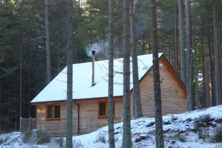 Red Squirrel Lodge - Logie Coldstone