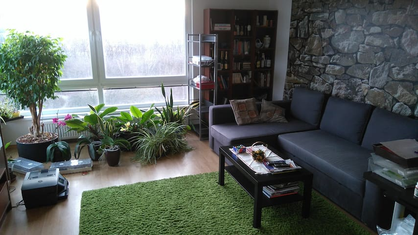 NEW Sunny 2BD apt. near Bory Mall and forest - Bratislava