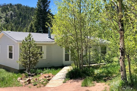 Escape to Black Bear Hollow~Secluded~Pet Friendly!