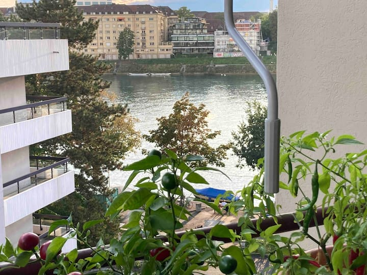 Cozy flat with Rhein view!