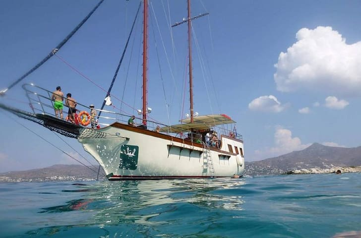 Athens Day Cruise Greek Islands Guests Plus 10