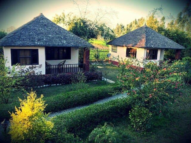Rustic Stays|Jungle Cottage |Bird Watcher's Heaven