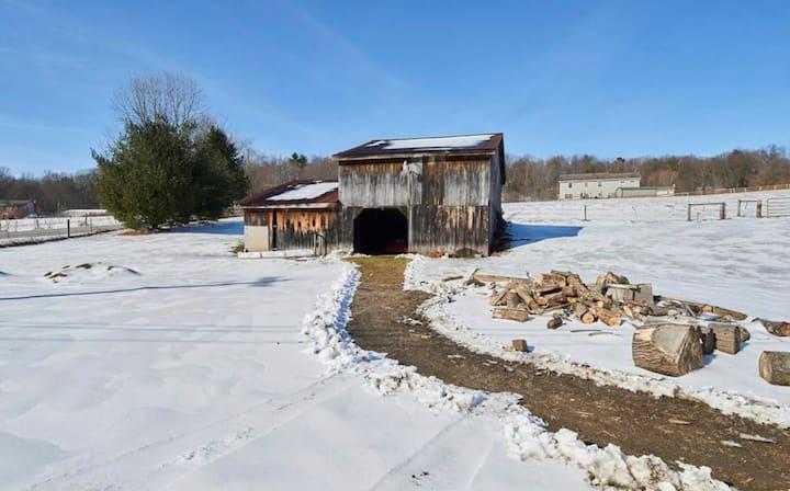 3 acre Farmette with barn
