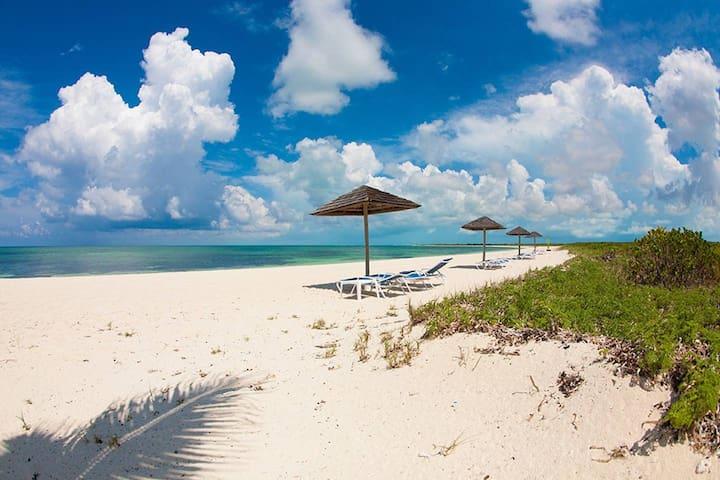 New Listing!! 3 bedroom/3 bath Ocean Retreat
