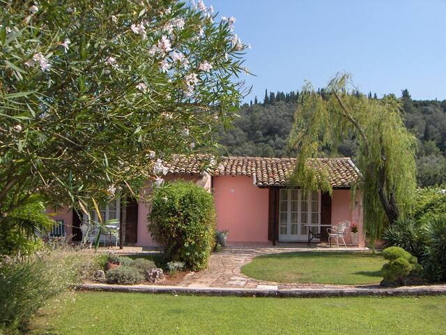 Casa Lucia the Pink Studios
