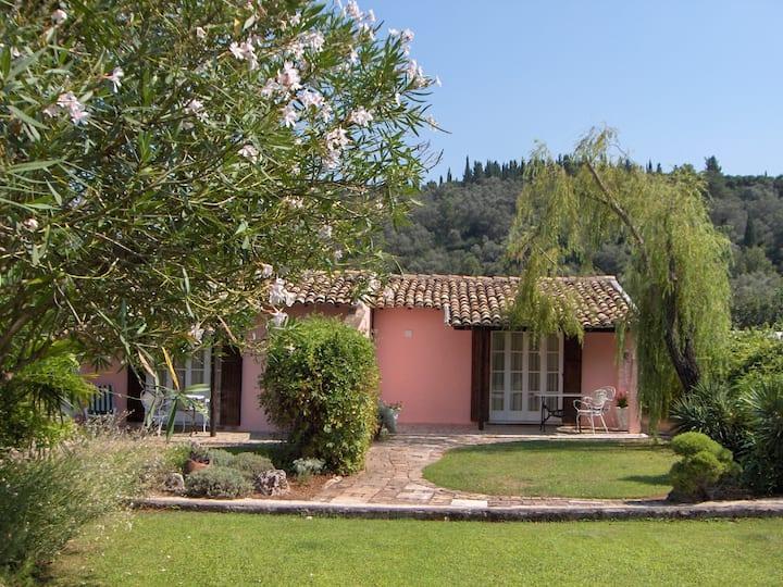 Casa Lucia the Pink Studios