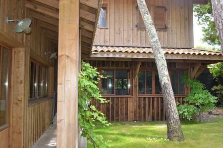 Villa récent en bois - Océan - Lège-Cap-Ferret