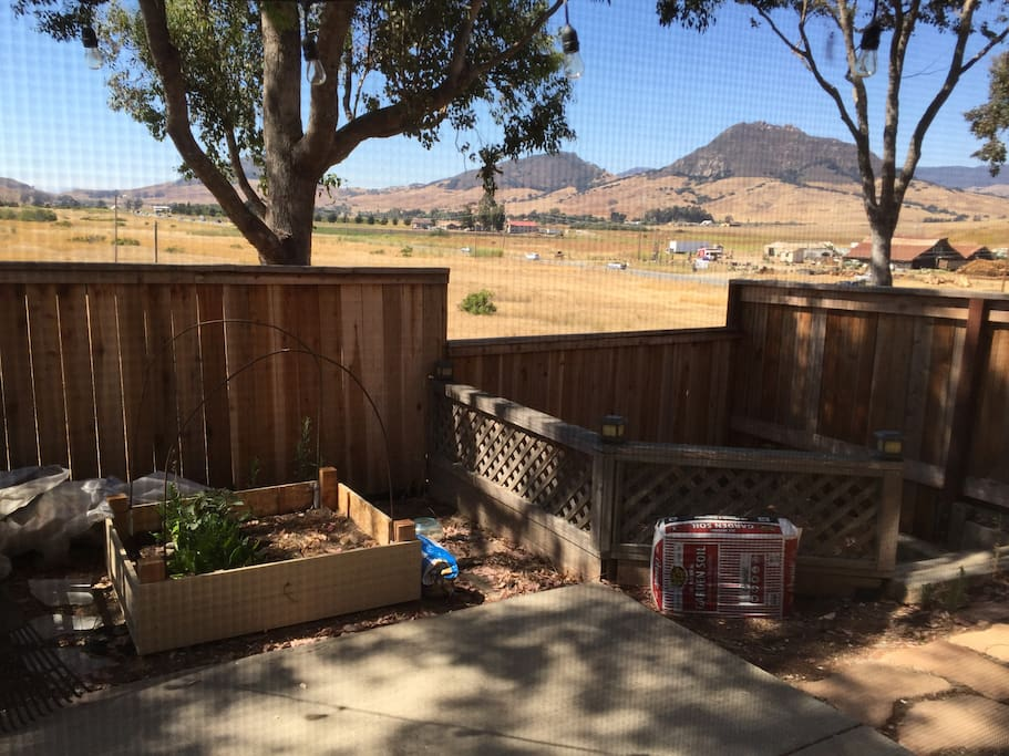 Second Backyard view