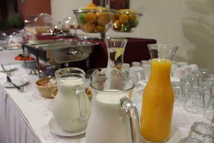 Single room at Balkan Hotel Garni