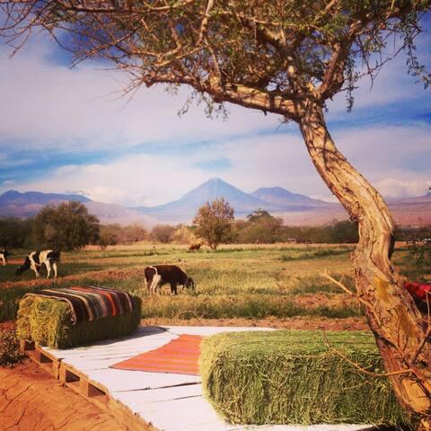 Atacama Glamp para 2+2 personas - San Pedro de Atacama - Bed & Breakfast