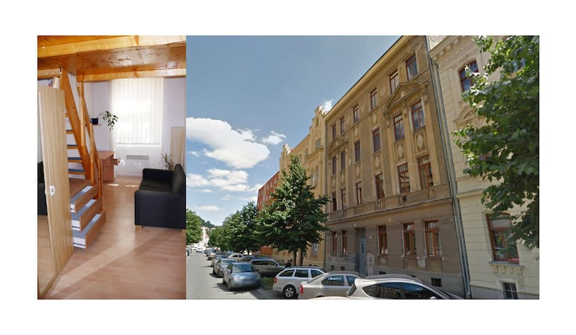 Brno Downtown Apartment in Historical Building