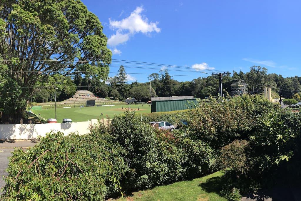 View from house of Pukekura Park sports ground