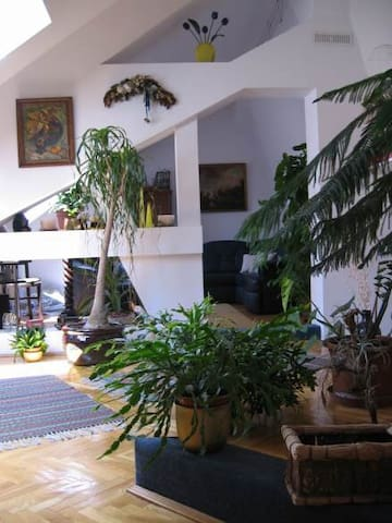 Beauty room and Roof terrace garden - Budapest - Bed & Breakfast