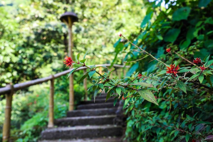 Climb down a few stairs and enjoy a relaxing holiday , and being close to nature !