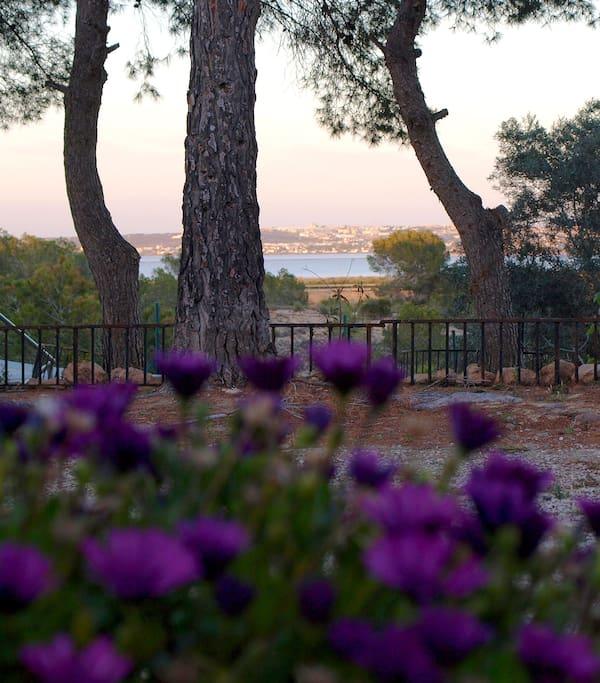 Garten...tolle Aussicht