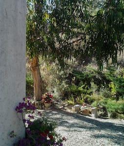 chambre à la colline & son petit déjeuner inclus - Bize-Minervois