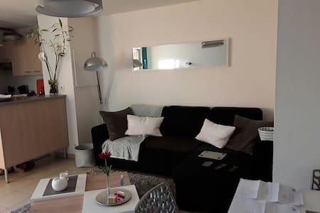 Bel appartement à partager - Castelginest