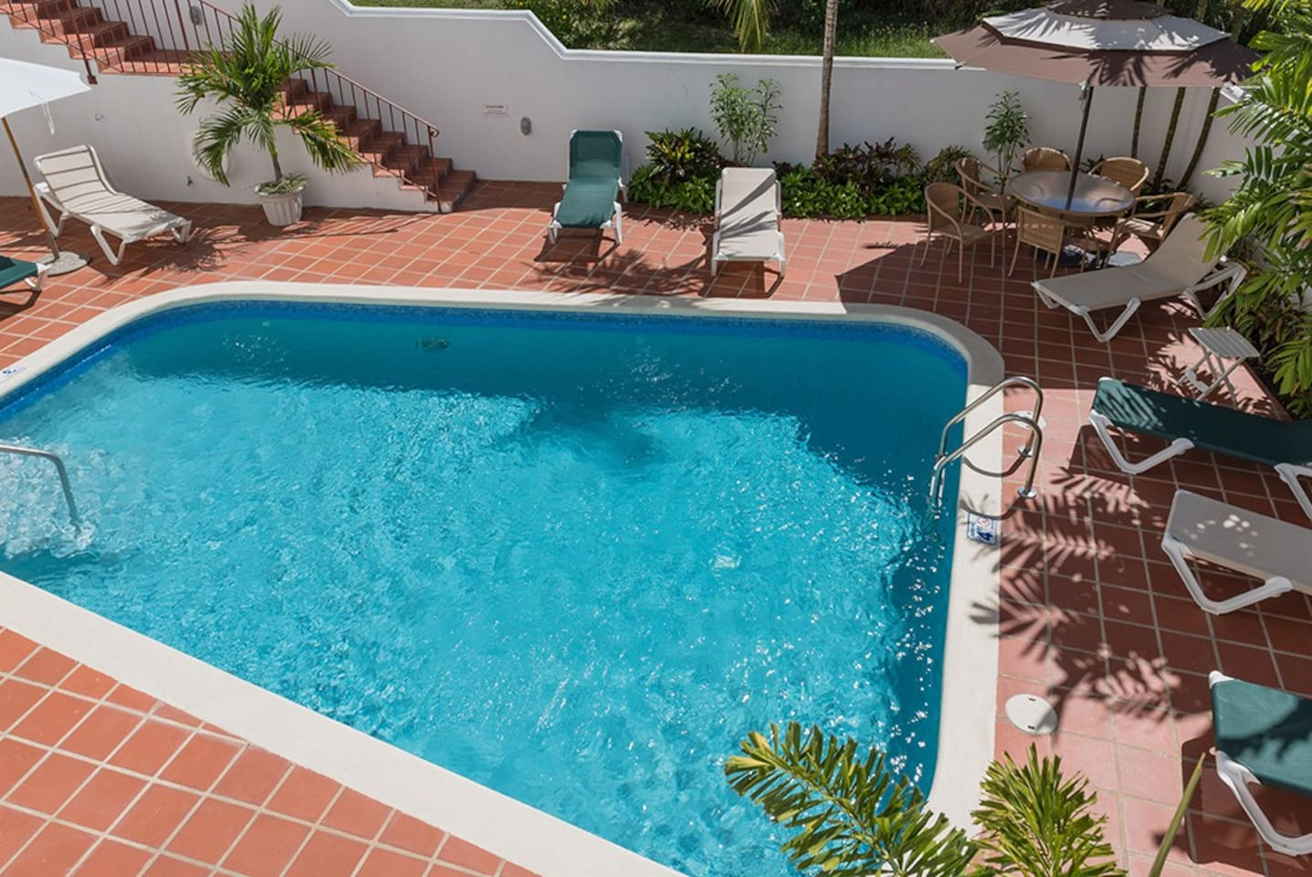 The swimming pool - ready for a dip ?