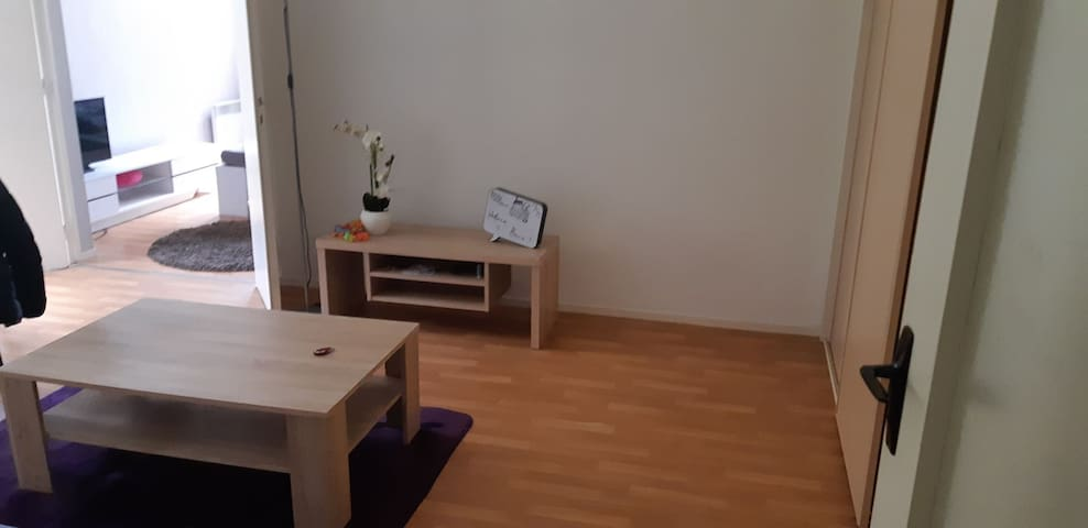 Cosy large appartment near city center