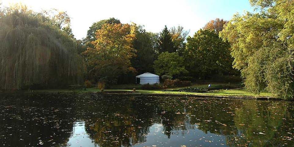 Idyllic lakeside Yurt - Radwell - Jurta