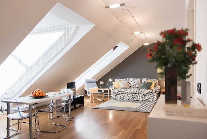 Beautiful attic with terrace in the city center