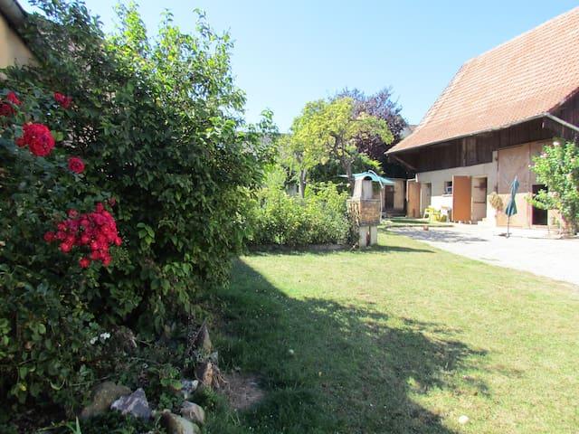 Gite Yves et Isa       Bel appartement au calme - Mittelwihr - Lakás