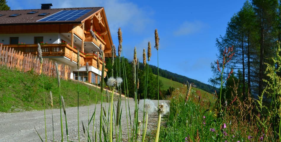 Wohnen am Oberpichlhof - Olang - Huoneisto