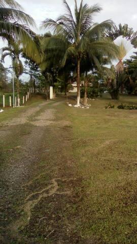 Hermosa quinta con árboles frutales zonas verdes