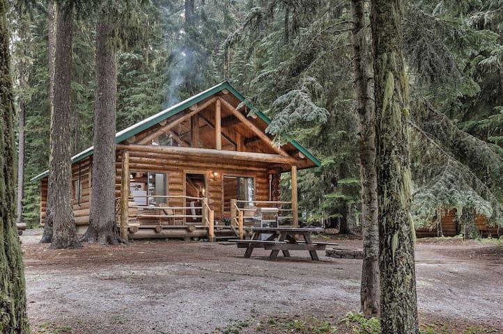 Rustic Log Cabin w/ 2 Queen Beds & Loft w/ 4 beds!
