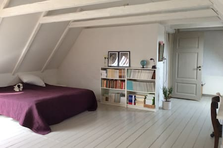 Large and bright studio - Odense - House