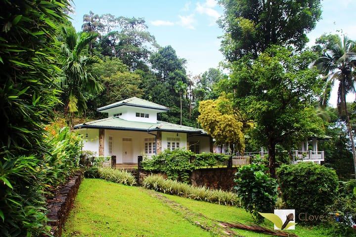 Clovefield Villa, Laxapana - Laxapana - Hus