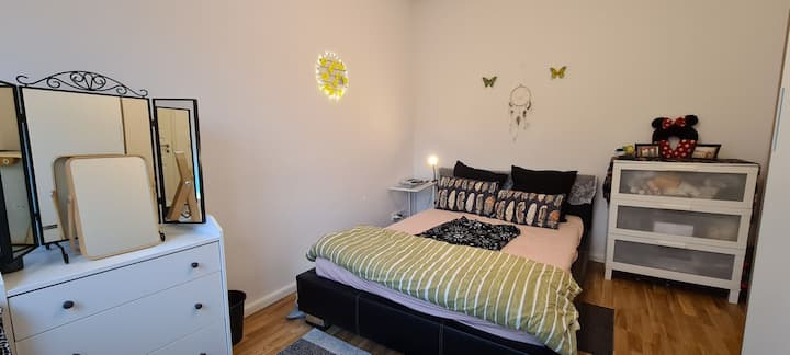Fully furnished Apartment available for 2 months
