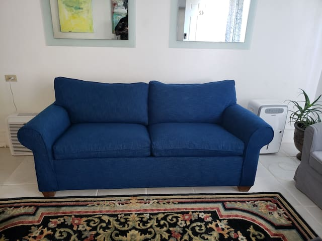 Common area with pullout sofa and armchairs