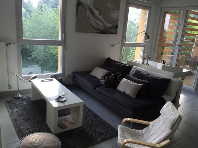 joli t3 lyon flats for rent in saint didier au mont d 39 or ra france. Black Bedroom Furniture Sets. Home Design Ideas