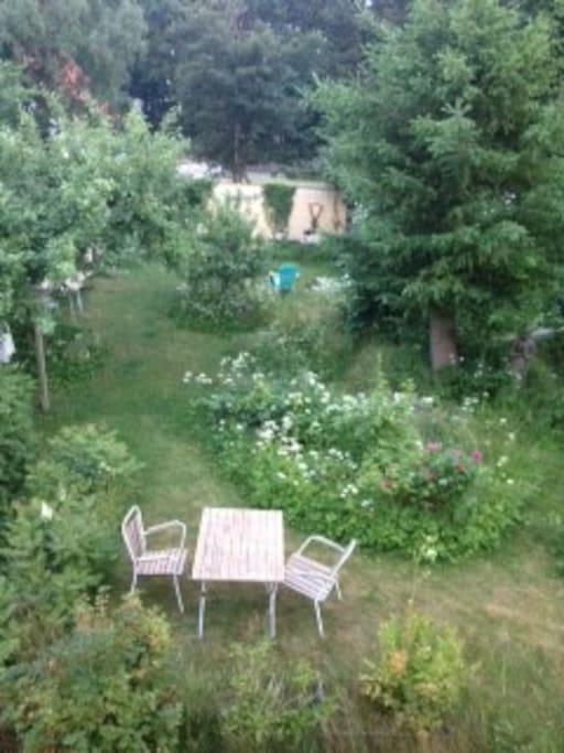 Baghaven som ses fra vinduet i værelset Garden