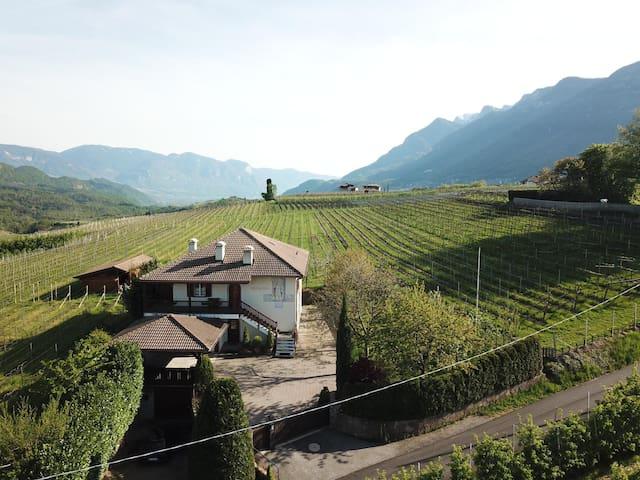 Weingut Hochleiten