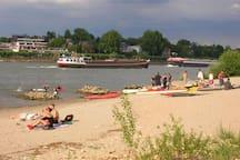 Blick von der Rheininsel Rettbergsaue auf die Wohnanlage