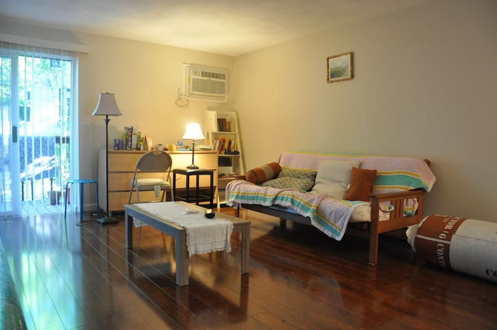 COZY and spacious place in watertown center - Watertown - Appartement